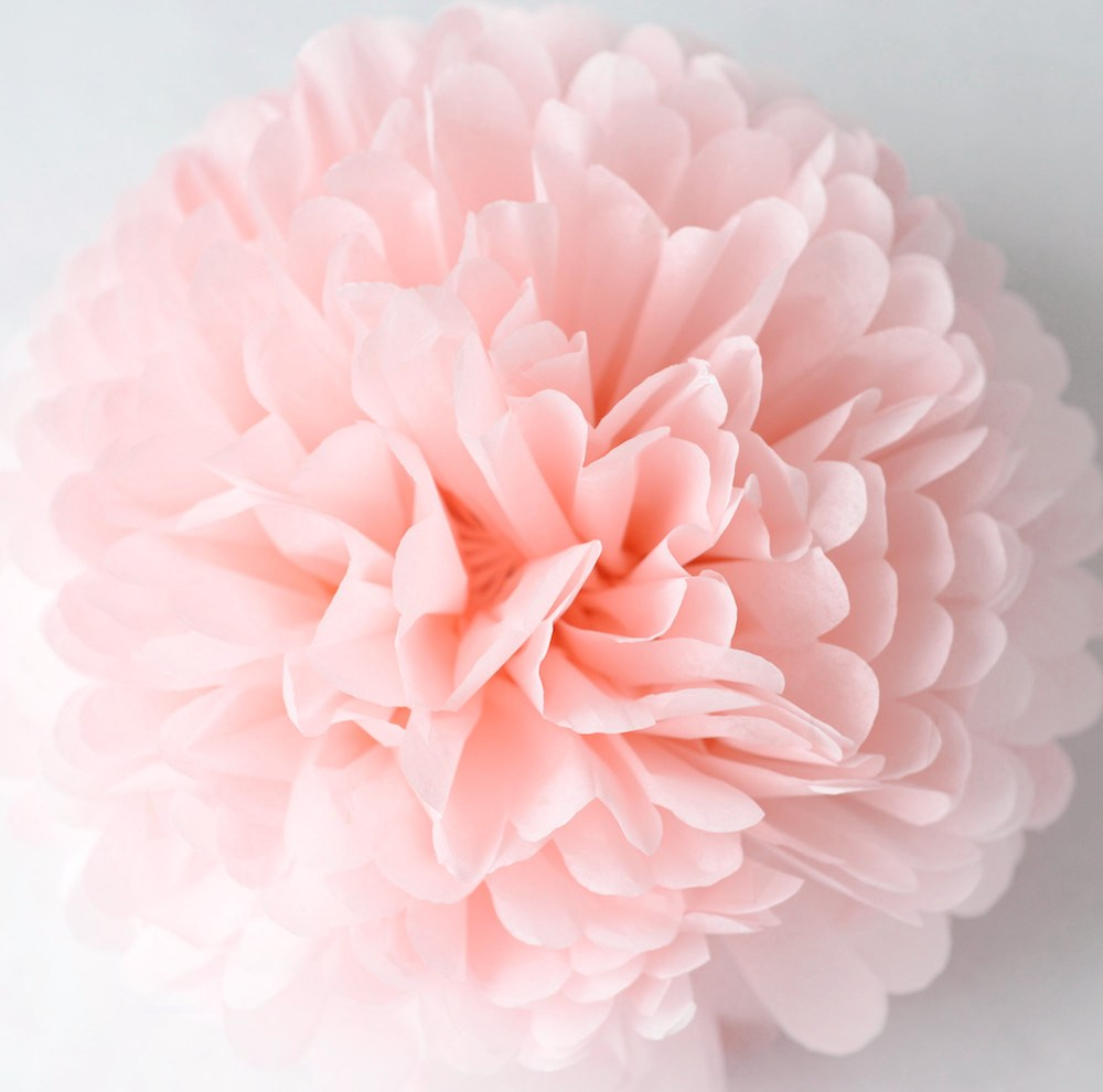 Light pink tissue paper pompom - Decopompoms - party decoration boutique