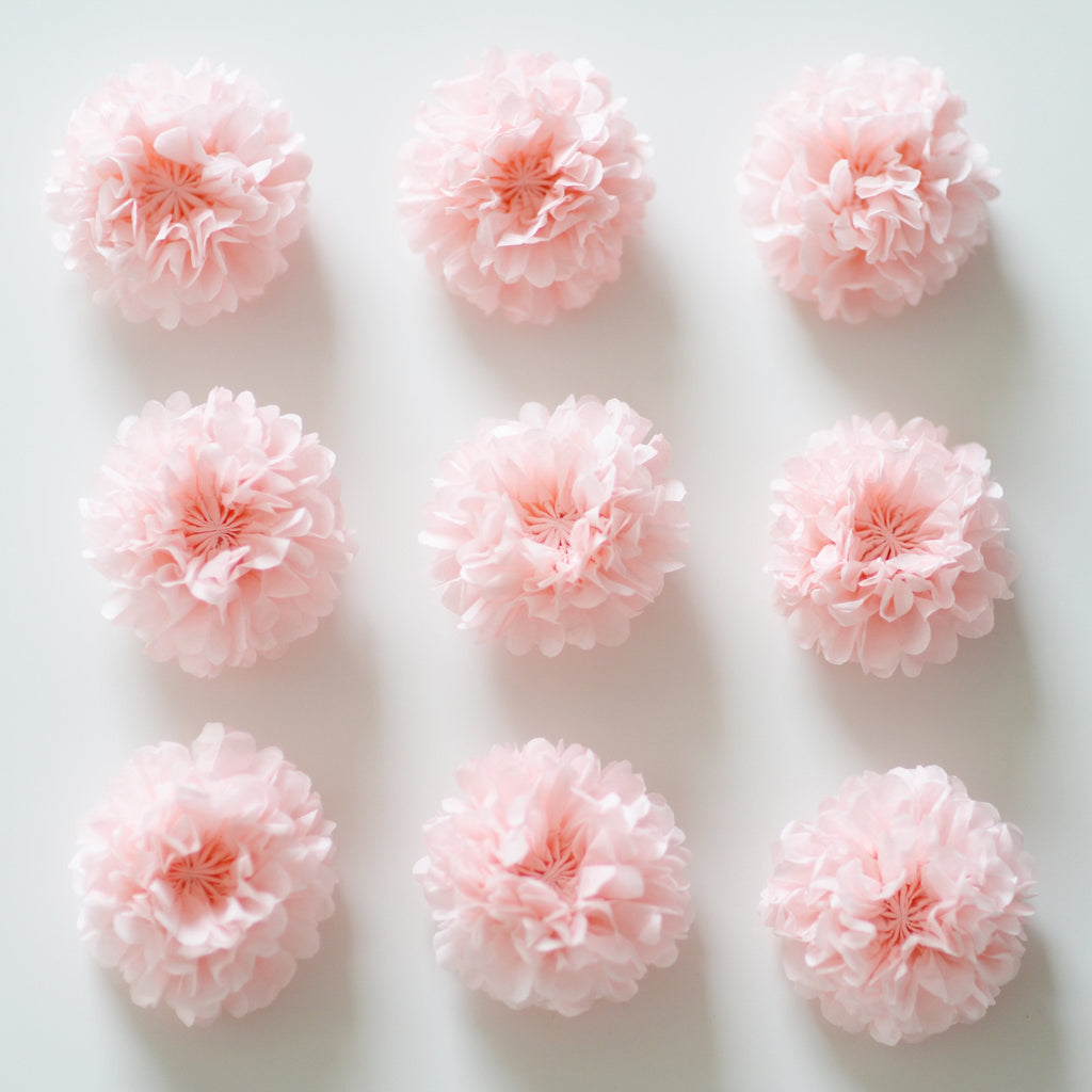 Pompom Set - Small Size 22 Cm / 8 Inch Pom Poms Value Set