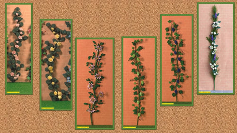 1/12 dollshouse miniature climbing plants