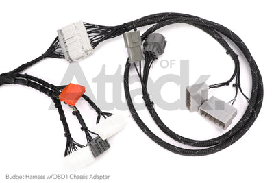 Rywire OBD2 Budget B / D-series Tucked Engine Harness