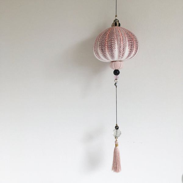 Hanging sculpture with seaurchin - large