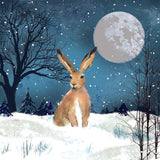 Christmas Hare Charity Christmas Cards