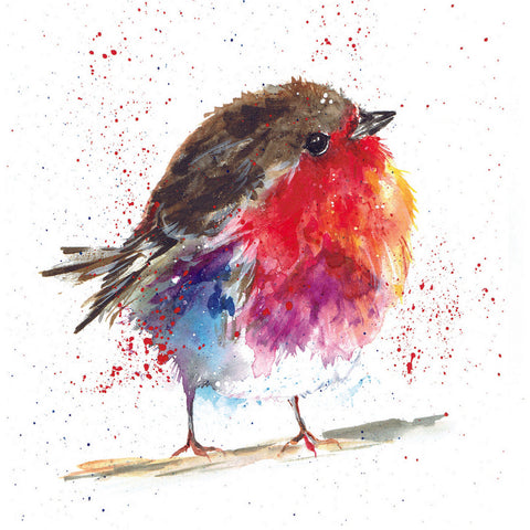 Fluffy Robin Charity Christmas Cards