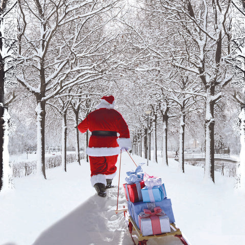 Santa Pulling Sledge Charity Christmas cards