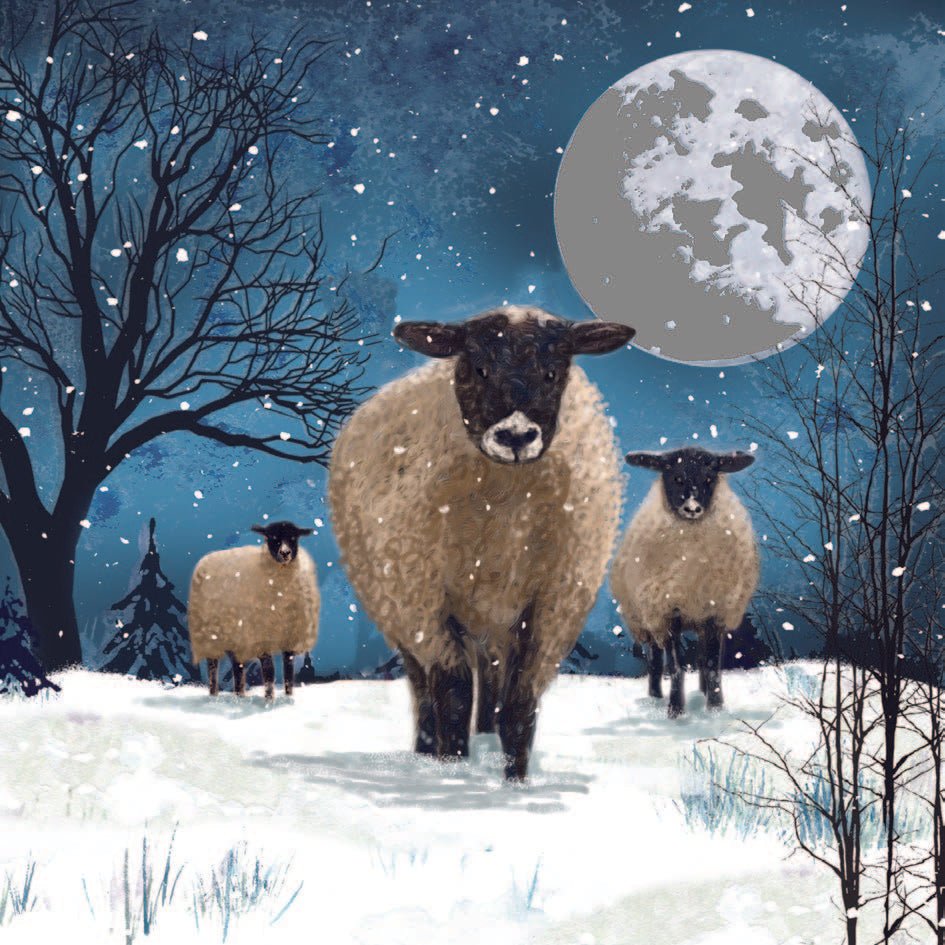 Sheep on a Hill and Christmas Hare Charity Christmas Cards – JDRF UK
