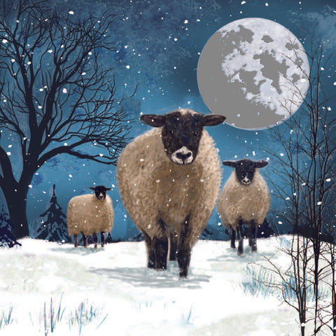 Sheep on a Hill Charity Christmas Card