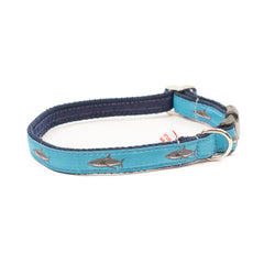 Great White Shark Dog Collar - Navy Webbing