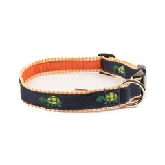 Turtle Dog Collar - Orange Gingham