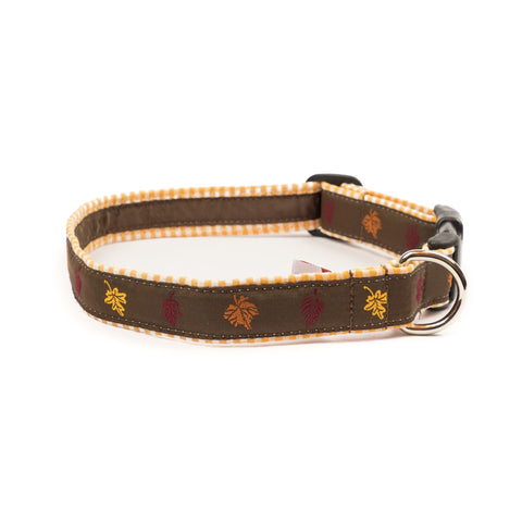 Fall Leaves Dog Collar 1
