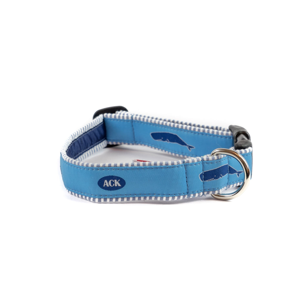 Nantucket Whales Dog Collar - Blue Seersucker