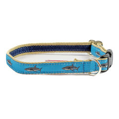 Great White Shark Dog Collar - Tan Webbing