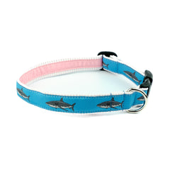 Great White Shark Dog Collar - Pink Seersucker