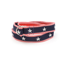 North Star Belt - Red Gingham