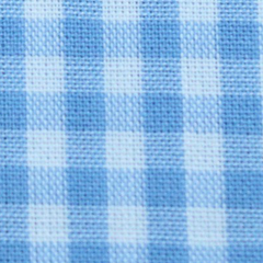 Golf Cart - Blue Gingham