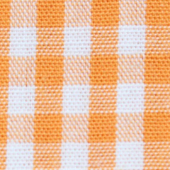 Turtle Belt - Orange Gingham