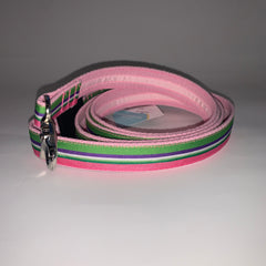 "Limited Edition Spring Stripe 1"" Leash"