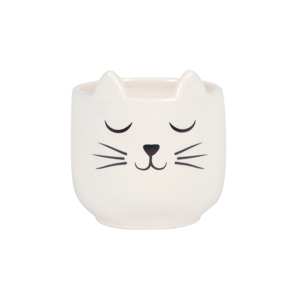 NEW IN! Cat's Whiskers Mini Planter