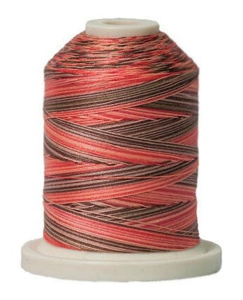 Signature Variegated Thread - 700 Yards - Cotton - 40 Weight - 250 Cannon View