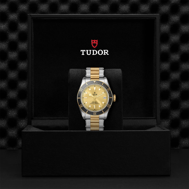 Tudor - Men's Black Bay S&G Watch M79733N-0004