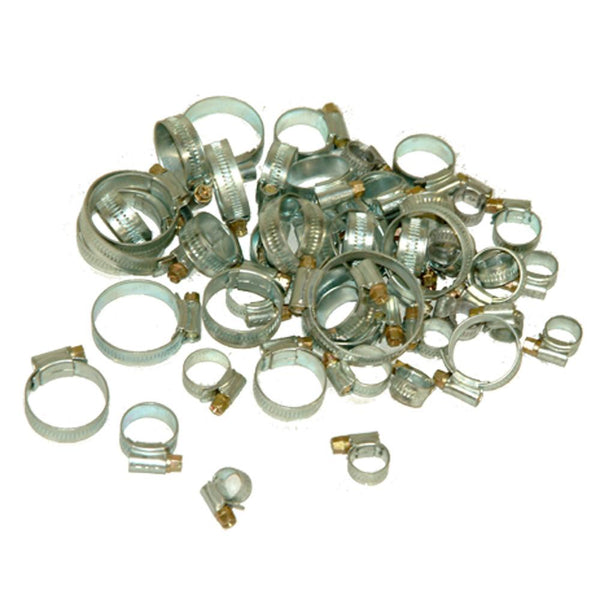 Assorted Hose Clips (12-50mm) - Pk 50