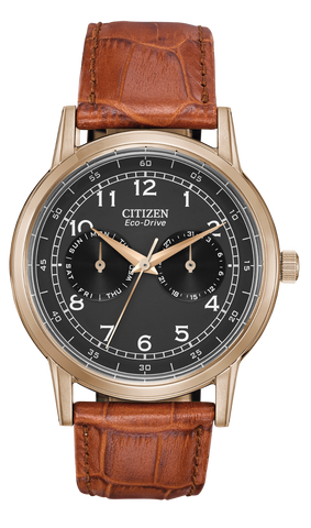 Men's Rose Gold-Tone Stainless Steel Citizen Eco-Drive Watch with Leather Band