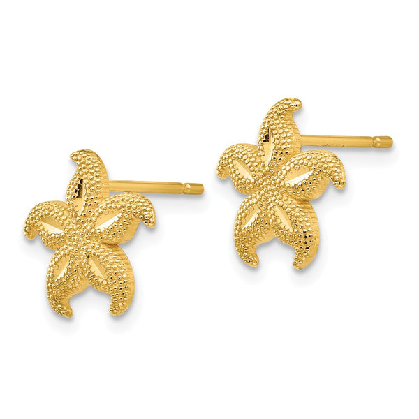 14 Gold Polished & Textured Starfish Post Earrings