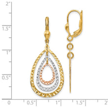 Load image into Gallery viewer, Leslie's 14k Tri-color Polished & Diamond-cut Leverback Earrings