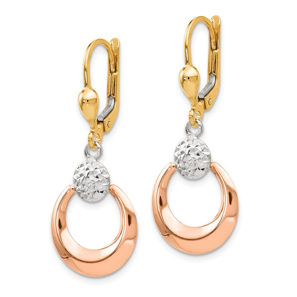 Leslie's 14k Tri-color Polished & Diamond-cut Leverback Earrings