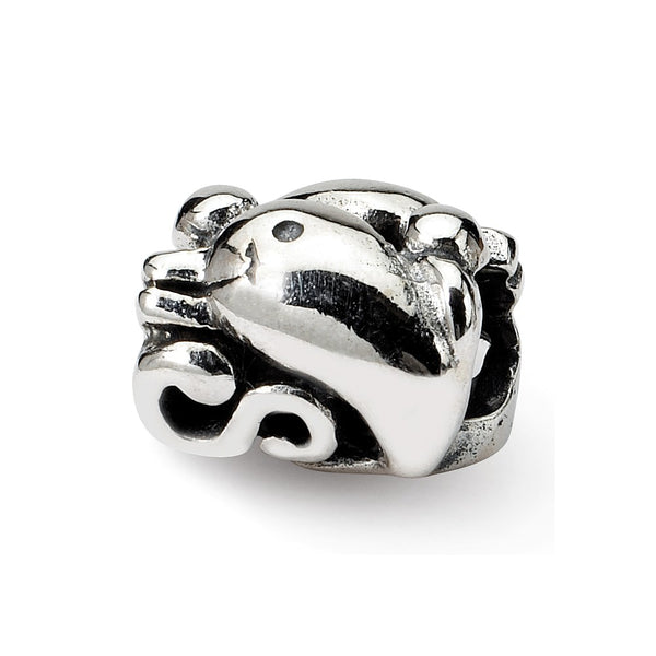 Sterling Silver Reflections Dolphin Bead