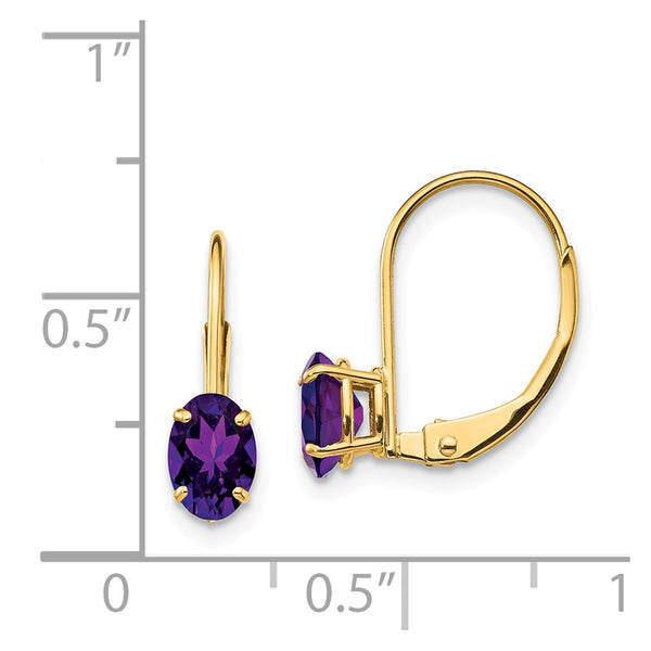 14k 6x4mm Oval Amethyst Leverback Earrings