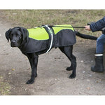 Padded Harness Dog Coat Hi Viz