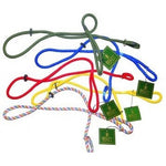 Bisley Dog Coloured Dog Leads