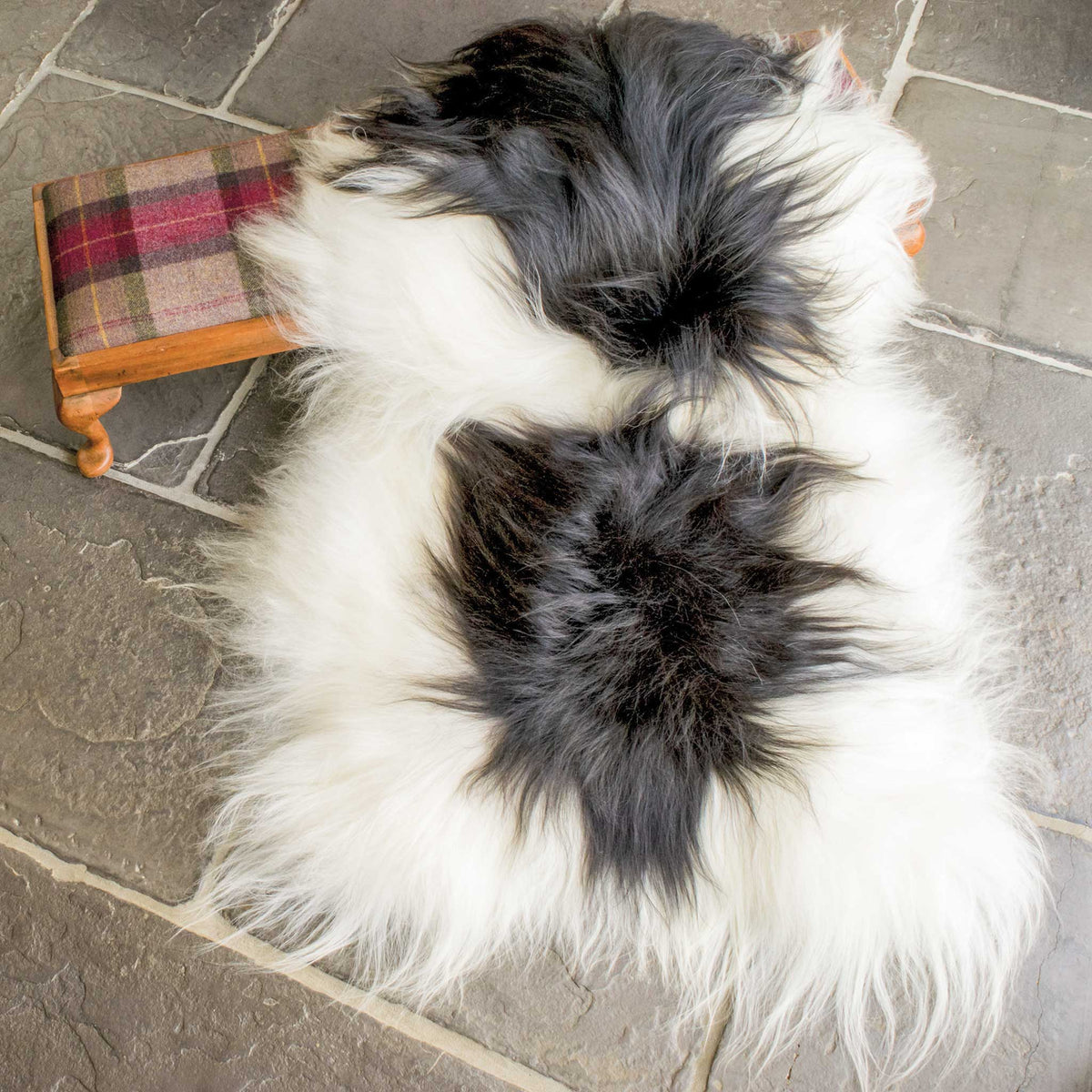 White & Black Spotted Icelandic Sheepskin - Long Pelt