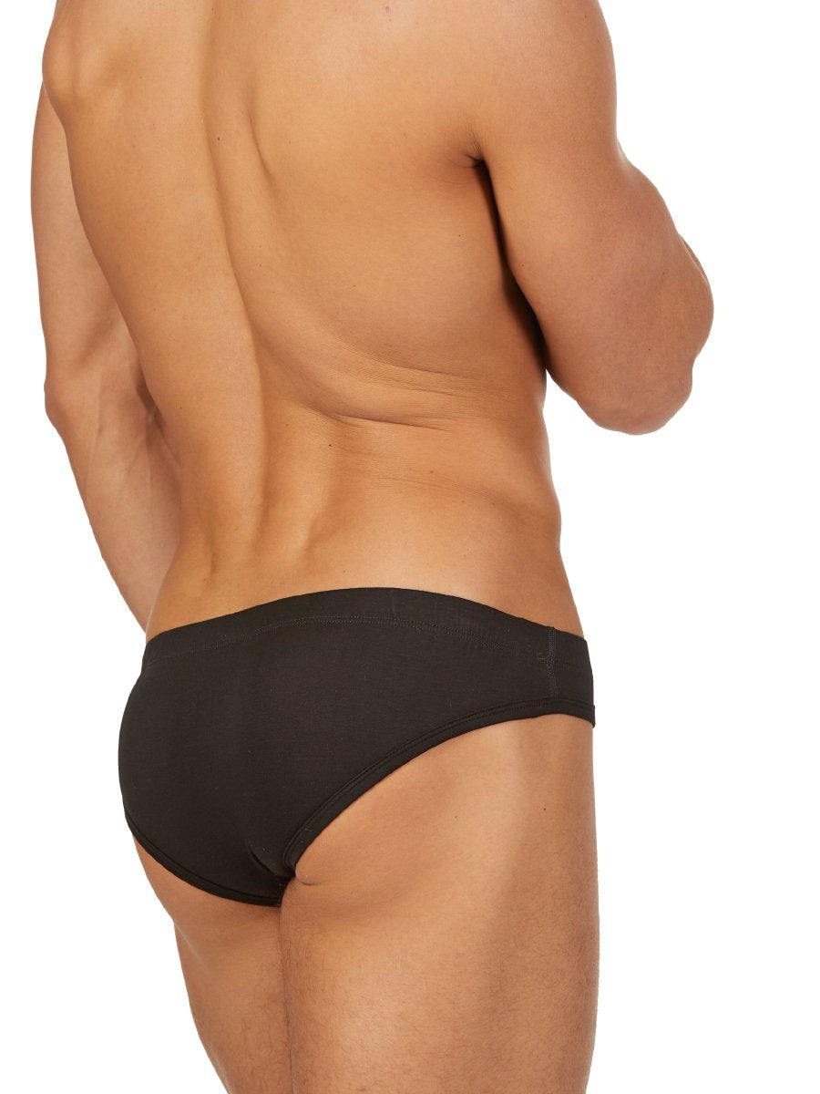 The Bamboo Brief
