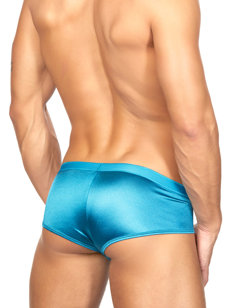 Men's blue briefs