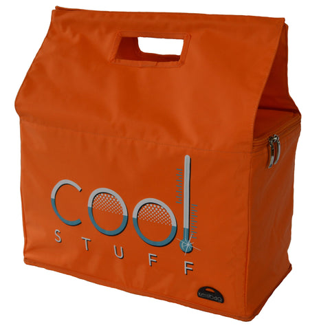 Insulated Reusable Shopping Bag- Cool Stuff Kerribag