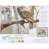 Paint Works Paint By Number Kit Wise Owl 14inX11in