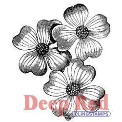 Deep Red Stamp Dogwood Flowers