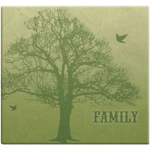 MBI Family Tree Post Bound Scrapbook 12inx12in