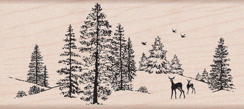 Hero Arts Mounted Rubber Stamps Winter Scene