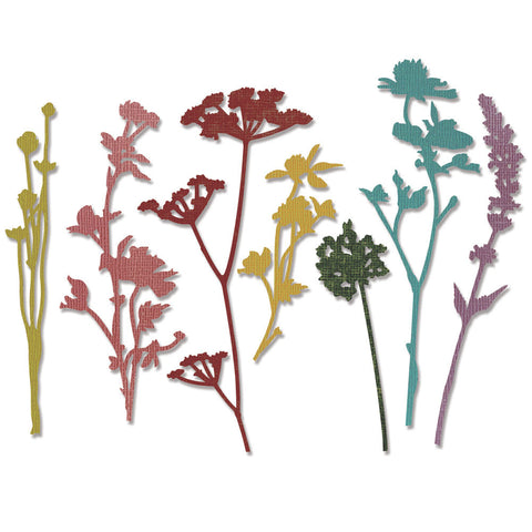 Sizzix Thinlits Dies By Tim Holtz® Wildflowers