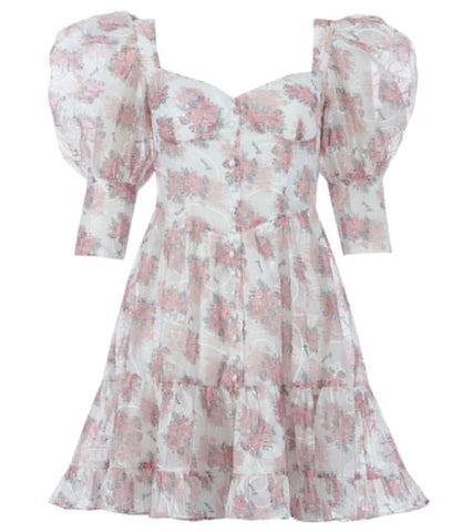 Adeline Mini Puff Sleeve Floral Dress