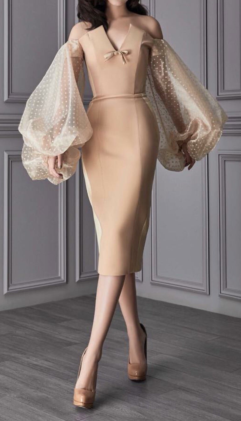 Wandha Beige Big Sleeve Dress