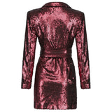 Demye Mini Sequins Long Sleeve V Neck Dress