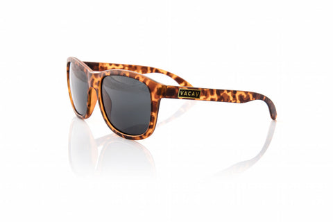 Classic Polarized / Tortoise Gold