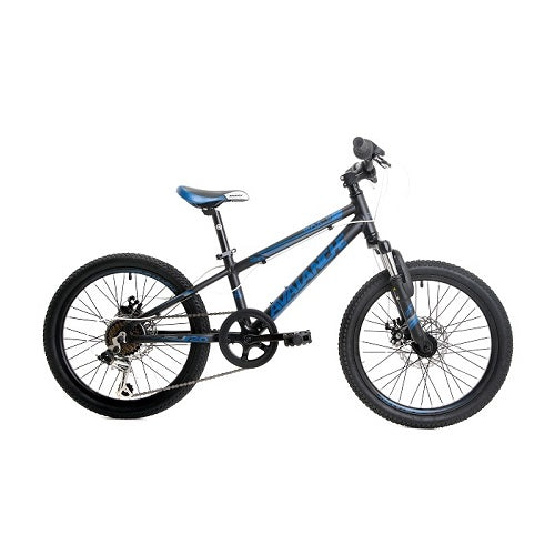 "AVALANCHE Max 20"" Disc (2019)"