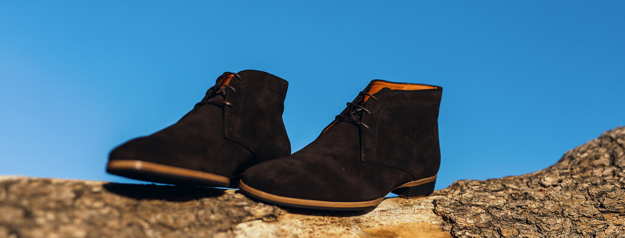 Wolf and Shepherds - Striker Chukka