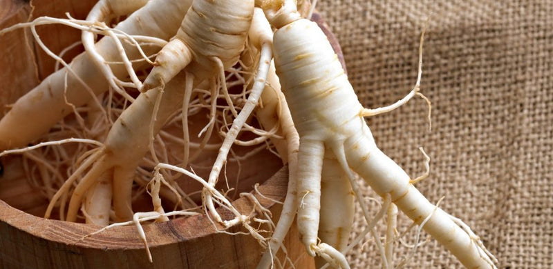 Adaptogens: Nature's Ancient Chill Pills