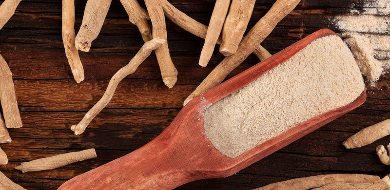 The Ultimate User Guide to Ashwagandha: Benefits & Uses, Types & Reviews