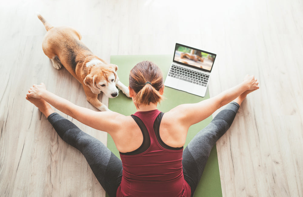 woman doing yoga at home with dog